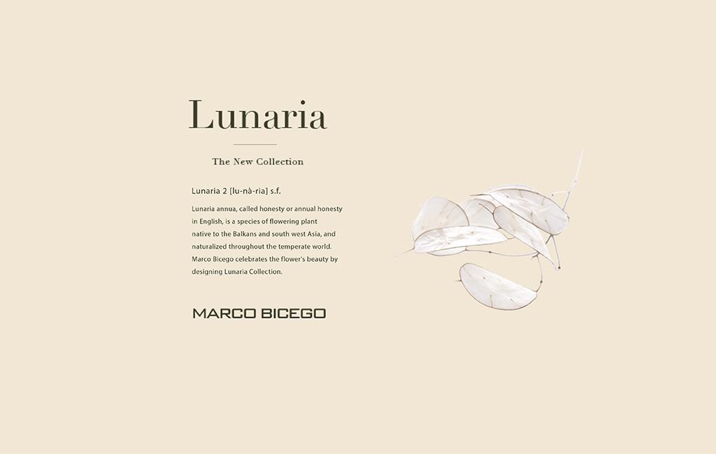 lunaria design